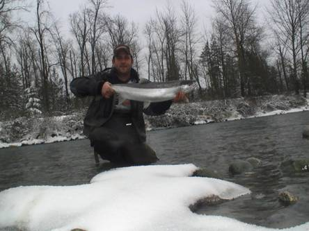 Vedder River Steelhead. Vedder River Steelhead Report